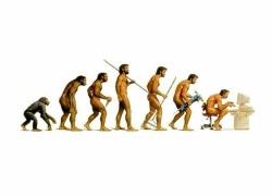 evolution_0