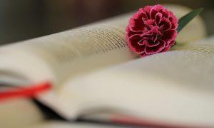 Iedzīvotāji grāmatas uzskata par svarīgām, bet lasa maz