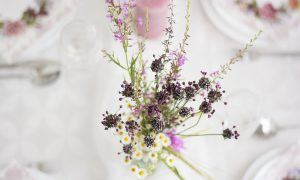 flowers-4004190_1920